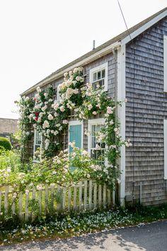 Cutest Homes Nantucket Flowers! Nantucket Style Homes, Nantucket Cottage, Nantucket Island, Nantucket Wedding, American Islands, New England Homes, Island Resort, Beach Cottages, Gardens