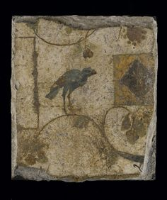 Piece of mural painting in stucco, with bird and fruit: Roman, 1st century.