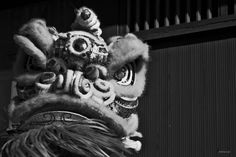 Chinese New Years 2012 by Alvina Lai, via Behance
