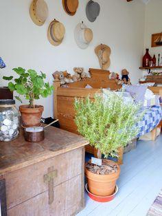 Pikkutalon elämää Planter Pots