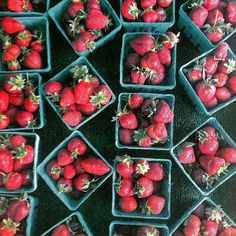 @b.duignan's #EBdailypic game is on point with the season's first #strawberries