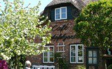Typisch friesisches Reetdachhaus an der Nordsee