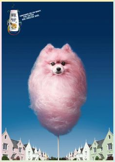 Vitakraft For You Beauty Shampoo: Sweet pink dog   Ads of the World™