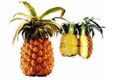 Ananasta yer alan enzimlerden elde edilen bromelain adı verilen karışım, kanserden sindirim bozukluklarına kadar birçok sağlık sorununa karşı bizi koruyor. Ülkemiz'de pek de tüketilen bir meyve olmayan ananas birçok yararlı etkisi nedeniyle kullanılmaya başlandı.