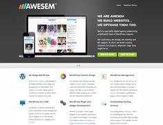 AWESEM homepage | www.awesem.com | Vendor