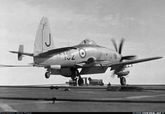 Westland Wyvern S4 Wyvern was a British single-seat carrier-based multi-role…