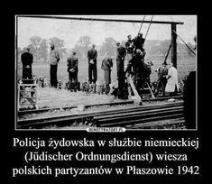 My polacy w mainz