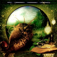 owl  my fantasie in psp