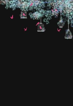 Cute Wallpaper Backgrounds Black Wallpaper Flower Background Wallpaper Frame Background Flower B Cute Wallpaper Backgrounds Black Wallpaper Flower Background Wallpaper Frame Background Flower B Cute Wallpaper Backgrounds Black nbsp hellip Black Phone Wallpaper, Flower Background Wallpaper, Framed Wallpaper, Frame Background, Dark Wallpaper, Cute Wallpaper Backgrounds, Pretty Wallpapers, Flower Backgrounds, Cellphone Wallpaper