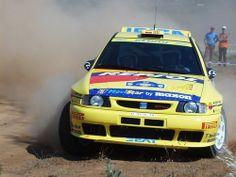SEAT Ibiza Kit Car rally car