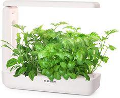 Toller kleine Indoorgarten!  Garten, Gartenarbeit, Hydroponik, Anzuchtsysteme Led, Gadgets, Herbs, Water Tank, Stones, Amazing, Summer, Plants, Herb