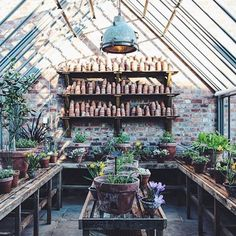 A great potting shed gets to me everytime. This is at Soho Farmhouse. Sheds like this are so appealing with their piles of upended terracotta pots and slatted potting tables and loads of special bulbs and tender plants. This is a repost from via Greenhouse Shed, Greenhouse Gardening, Cheap Greenhouse, Portable Greenhouse, Indoor Greenhouse, Cheap Pergola, Dream Garden, Home And Garden, Garden Modern