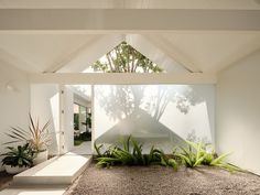 Casa Eichler, Sheet Rock Walls, Beam Structure, Gable House, Glazed Walls, Through The Roof, Minimal Home, Growing Tree, Mid Century House