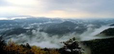 Low haning fogs in the Great smoky mountains, Gatlinburg TN