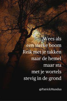 Wees als een sterke #boom. Reik met je takken naar de hemel maar sta met je wortels stevig in de grond...