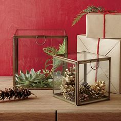 Shop Crate and Barrel to find everything you need to outfit your home. Browse furniture, home decor, cookware, dinnerware, wedding registry and more. Glass Boxes, Display Boxes, Home Living Room, Crate And Barrel, Home Accents, Terrarium, Decorating Your Home, Gift Guide, Crates