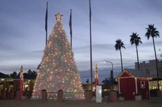 These trees go above and beyond the average Douglas Fir or Frasier - check out the weirdest festive Christmas trees from around the world! Types Of Christmas Trees, Christmas Light Show, Hanging Christmas Lights, Unique Christmas Trees, Holiday Lights, Christmas Love, Lobster House, Lobster Trap, Christmas In America
