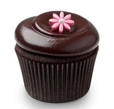 Chocolate cupcake with spring flower
