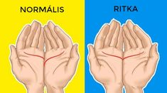 Checkout What Your Palms Say About Your Love Life Palmistry or chiromancy which are also known as palm reading or chirology is nothing but foretelling the future through the study of palm. Palmistry Reading, Most Satisfying Video, Hand Massage, Massage Benefits, Massage Tips, Lose 5 Pounds, Massage Techniques, Youtube, Married Life