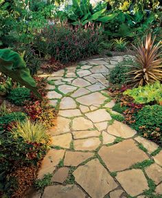 Roses outdoor walkway, walkways paths side of house, wedding … – front yard landscaping ideas Cobblestone Walkway, Flagstone Pathway, Gravel Walkway, Backyard Walkway, Outdoor Walkway, Front Yard Landscaping, Pathway Stone, Landscaping Ideas, Patio Stone