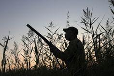 """""""El niño del cazador soñaba hasta el alba en cacerías con escopetas."""" (""""El niño del cazador."""")"""