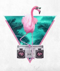 Miami Flamingo by Robert Farkas