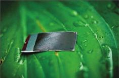 A detailed description of development of the first practical artificial leaf -- a milestone in the drive for sustainable energy that mimics the process, photosynthesis, that green plants use to convert water and sunlight into energy