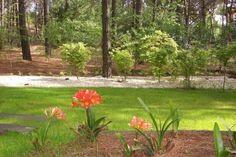Pinamar gardens