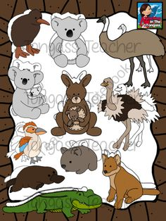 Australian Animal Friends Clipart Bundle from tongassteacher on TeachersNotebook.com -  (40 pages)  - This bundle includes a kangaroo and baby, koala, koala and baby, echidna, crocodile, dingo, emu, ostrich, wombat, platypus, kookaburra, and a rainbow of plain and stitched maps of Australia!