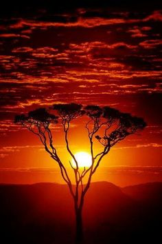 Such a gorgeous sunset in Africa, who wants to go?
