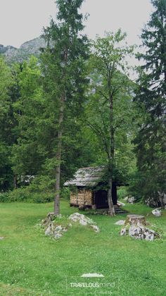 The backyard of our house in Slovenia.