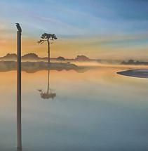 water reflections - Google Search Water Reflections, Wind Turbine, Google Search, Nature, Naturaleza, Nature Illustration, Off Grid, Natural