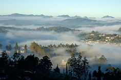 Which is your most favorite #winter destination in India?  a) Mussoorie b) Ooty c) Manali d) Darjeeling