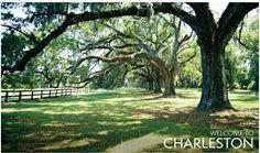 Discover Charleston.com