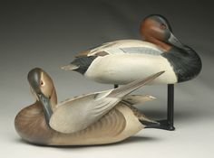 Very rare pair of canvasbacks by the Ward Brothers.