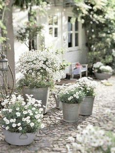 Using outdoor planters is the perfect way to create beautiful container gardens for your front porch, patio or any outdoor space. ideas plants 16 Easy Container Gardening Ideas for Your Potted Plants Diy Garden, Garden Cottage, Dream Garden, Garden Landscaping, Blue Garden, White Pebble Garden, Garden Shade, Herbs Garden, Garden Living