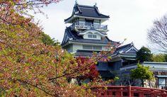 Oyama Castle