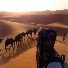 83 Travel Experiences to Have While You're Alive and Breathing - some great inspiration on the best sights to see around the world - like exploring the Sahara Desert (image source: Instagram user michellerutty)