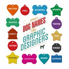 Are you a graphic designer? So your pet needs one of these cool names :) i choose PIXEL