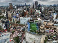 Shibuya from top
