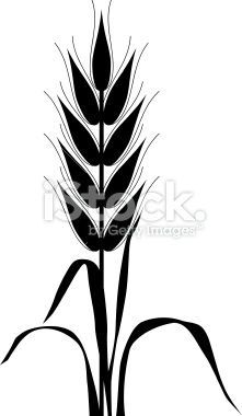Corn stalk stencil drawing google search refinished for Corn stalk template