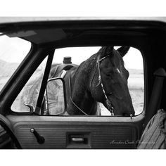 Horse & Truck  by Anderson Creek Photography