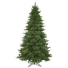 Vickerman Camdon Fir Green 12 Foot x 80-Inch Christmas Tree with 5128 Tips