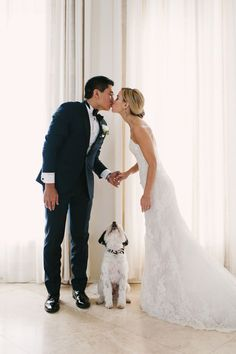 The Most Adorable Doggie Wedding Pics - Mon Cheri Bridals