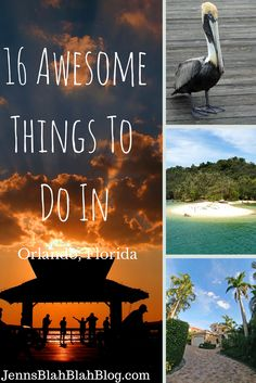 Things to Do Orlando Florida If you have done any (fun|exciting} things in St Petersburg please pin them here.