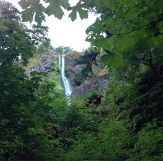 Columbia River Gorge, Hood River County, Oregon — by Charlie Rattigan. Starvation Creek State Park