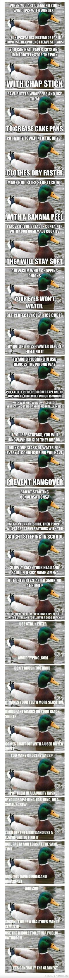 Actual Advice Mallard Meme (except it's the windex that leaves streaks, not the paper towels)