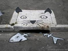 Cat and Fish Painted Sewer