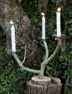 Une branche d'arbre transformée en chandelier