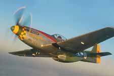 Mustang Gunfighter P-51 USAAF